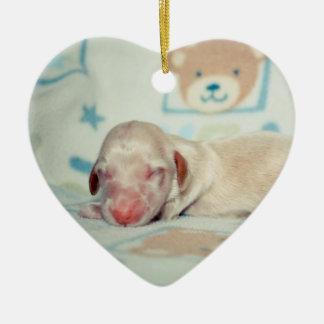 Bae Newborn-Lovebugdoxies puppy keepsake Christmas Ornament