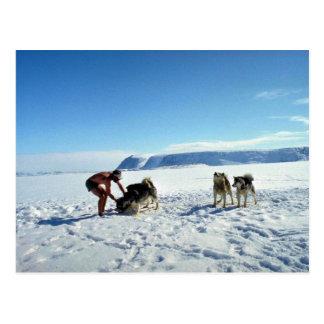 Baffin Island, Northwest Territories Postcard