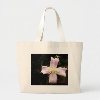 + BAG