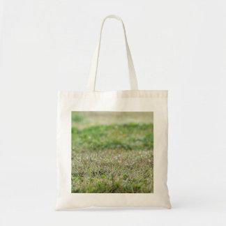 Bag Bleaches on grass