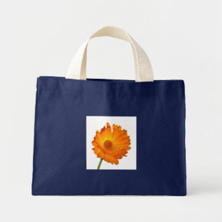 Bag - Calendula  on stem
