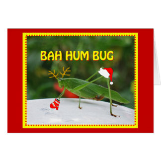 Bah Hum Bug Card