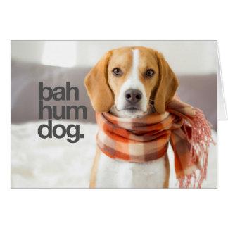 """Bah Hum Dog"" Beagle Greeting Card"