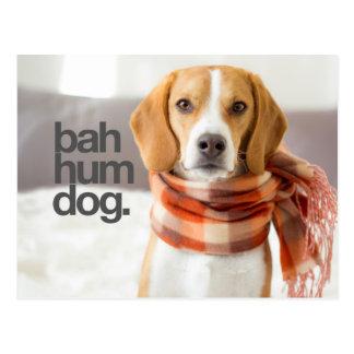 """Bah Hum Dog"" Beagle Postcard"