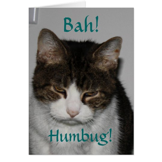Bah! Humbug! - Cat's Holiday Greeting Card