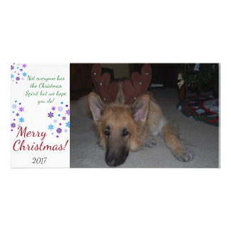 Bah Humbug Christmas Card German Shepherd funny Customized Photo Card
