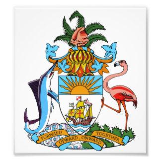 Bahamas Coat Of Arms Photo