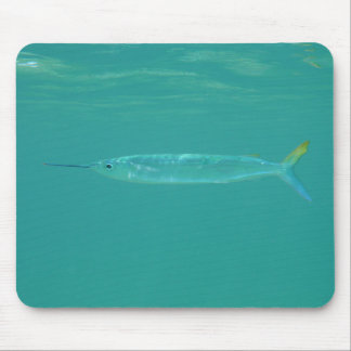 Bahamas Fish 1 Mouse Pad