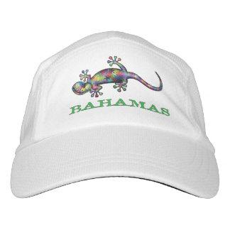 Bahamas gecko hat