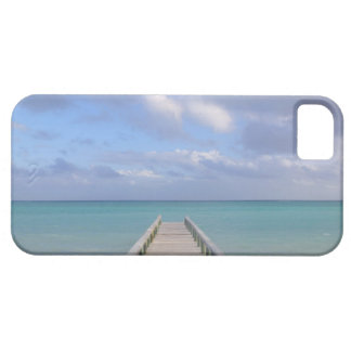 BAHAMAS, Grand Bahama Island, Eastern Side: iPhone 5 Cases