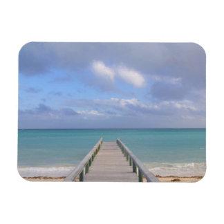 BAHAMAS, Grand Bahama Island, Eastern Side: Magnet