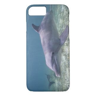 Bahamas, Grand Bahama Island, Freeport, Captive 2 iPhone 7 Case