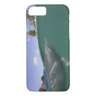 Bahamas, Grand Bahama Island, Freeport, Captive iPhone 8/7 Case