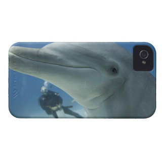 Bahamas, Grand Bahama Island, Freeport, Scuba 2 iPhone 4 Cases