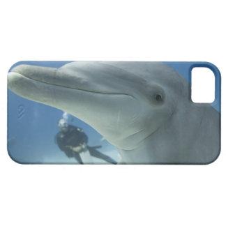 Bahamas, Grand Bahama Island, Freeport, Scuba 2 iPhone 5 Covers