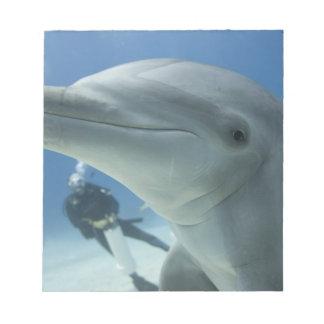 Bahamas, Grand Bahama Island, Freeport, Scuba 2 Notepad