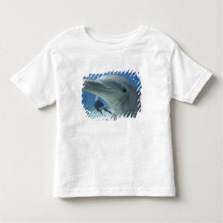 Bahamas, Grand Bahama Island, Freeport, Scuba 2 Toddler T-Shirt