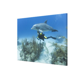 Bahamas, Grand Bahama Island, Freeport, Scuba Canvas Print