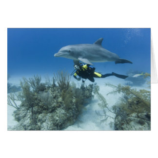 Bahamas, Grand Bahama Island, Freeport, Scuba Card