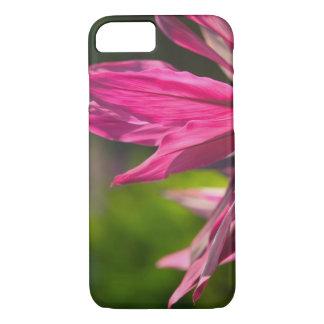 BAHAMAS, New Providence Island, Nassau: Paradise iPhone 8/7 Case