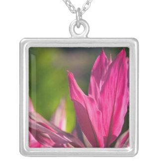 BAHAMAS, New Providence Island, Nassau: Paradise Silver Plated Necklace