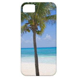 Bahamas Palm Tree iPhone 5 Case