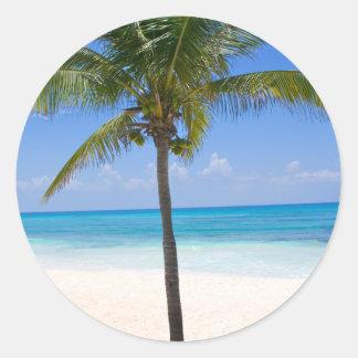 Bahamas Palm Tree Classic Round Sticker