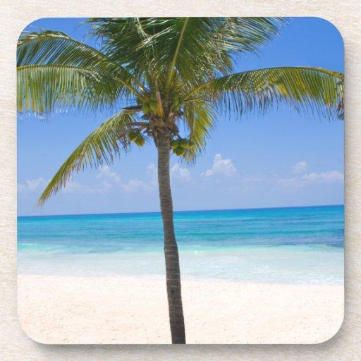 Bahamas Palm Tree Beverage Coaster