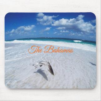 Bahamian Beach Mouse Mat