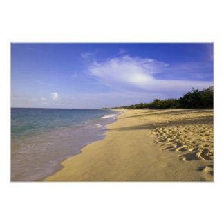 Baie Longue Long Bay beach, St. Martin, Poster