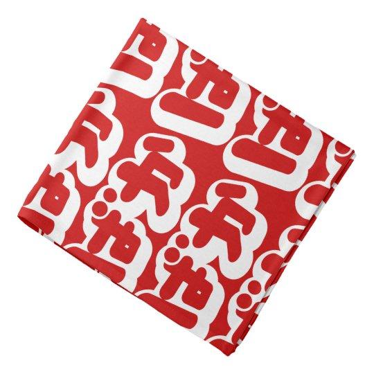 BAKA ばか ~ Fool in Japanese Hiragana Script