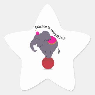 Balance Is Everything! Star Sticker