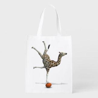 Balancing Giraffe