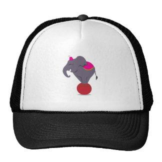Balancing on Ball Trucker Hat