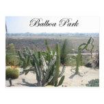 Balboa Park 3 Postcard