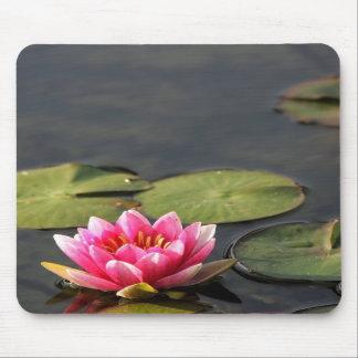 balboa park Lily mousepad