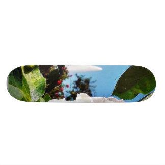 Balboa Park Roses 19.7 Cm Skateboard Deck
