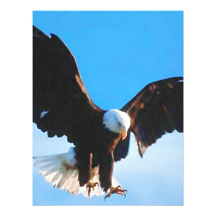 Bald American Eagle 21.5 Cm X 28 Cm Flyer