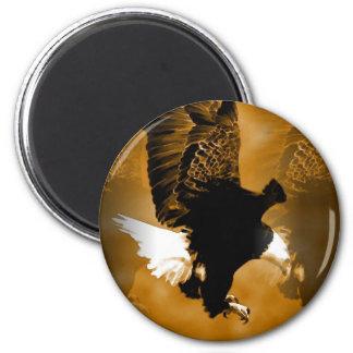 Bald American Eagle in Flight Refrigerator Magnet