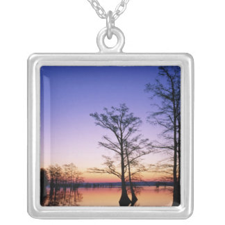 Bald cypress trees silhouetted at sunset, silver plated necklace