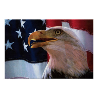 Bald Eagle 4th Of July poster 12