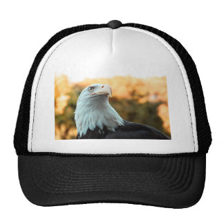Bald Eagle Against Autumn Leaves Trucker Hat