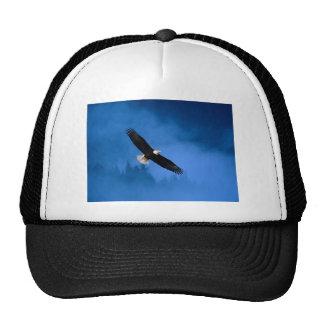 Bald-Eagle-Alaska Mesh Hats