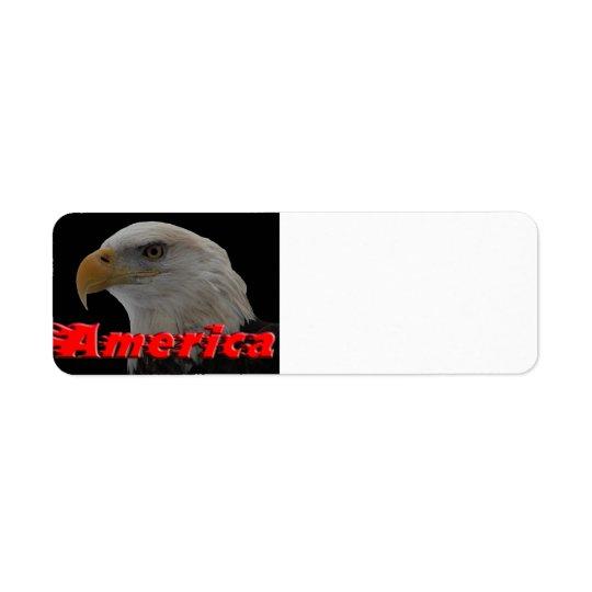 Bald Eagle - America
