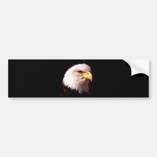 Bald Eagle American Eagle Bumper Sticker