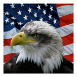 Bald Eagle American Flag Print