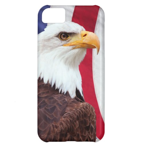Bald Eagle and American Flag iPhone 5C Cover
