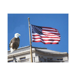 Bald Eagle And American Flag Gallery Wrap Canvas