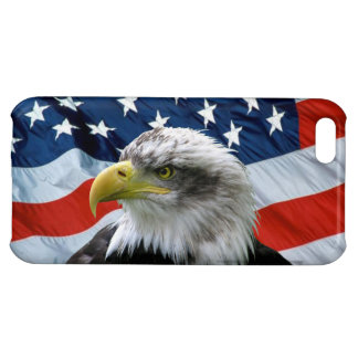 Bald Eagle and American Flag iPhone 5C Case
