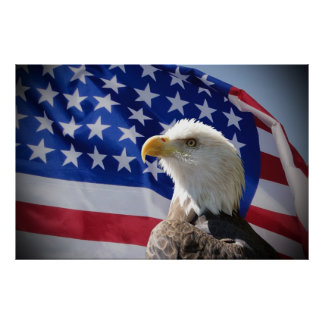 Bald Eagle and American Flag Posters